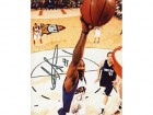 Amare Stoudemire Autographed / Signed Phoenix Suns Basketball 8x10 Photo