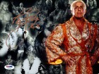 "Ric Flair Autographed 8x10 Photo WWE ""16X"" PSA/DNA Stock #64849"