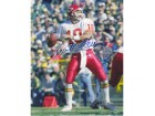 Trent Green Kansas City Chiefs 8x10 #262 Autographed Photo