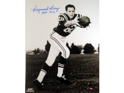 Raymond Berry signed Baltimore Colts 16x20 Photo HOF 1973