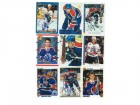 Edmonton Oilers Lot of 9 Autographed Cards. You will receive all cards in the picture. This Lot includes: Tyler Wright, Dave Oliver, Scott Thornton, Luke Richardson, Dave Manson, Scott Allison, Craig Muni, Mike Stapleton & Scott Pearson.